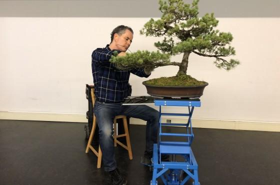 Bonsai werktafel zittend