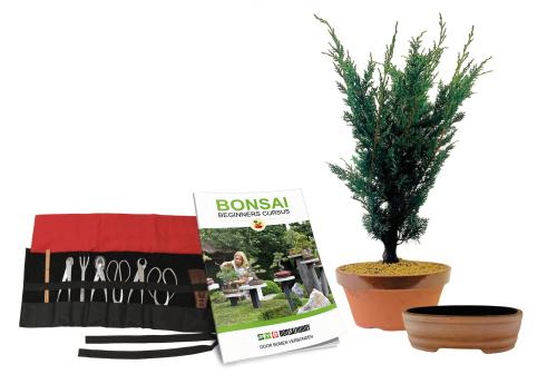 Wat is inbegrepen bij de Bonsai Beginners Cursus?