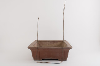 Bonsaipot met vier openingen-3