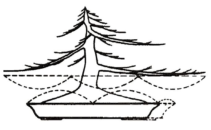 Hoe bepaal ik de breedte van een bonsaischaal?