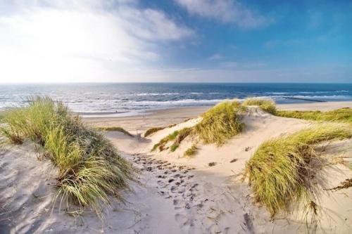 Groepsaccommodatie in Noord-Holland aan het strand met famillie