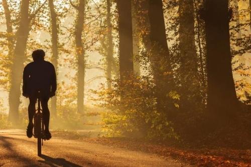 groepsaccommodaties in twente ideaal voor fietsers en wandelaars