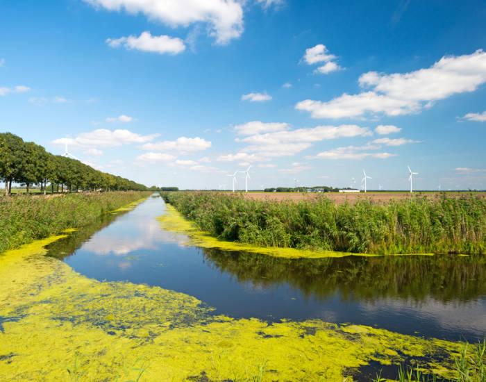 Groepsaccommodaties in Flevoland genieten van de polderlandschappen