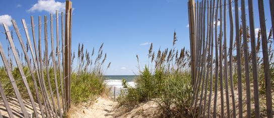 Mooi strand in nederland