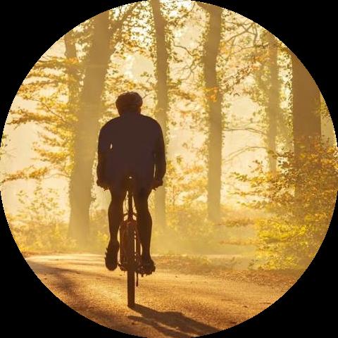 Groepsaccommodaties in Flevoland sportief fietsen over de polderlandschappen
