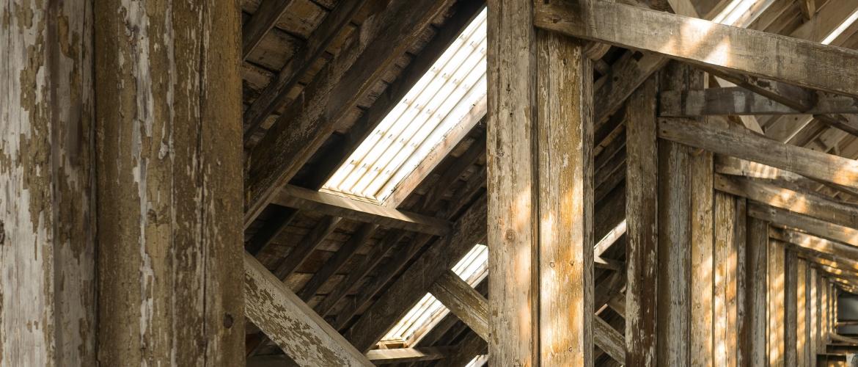 Alles wat je moet weten over houtskeletbouw in 5 minuten!