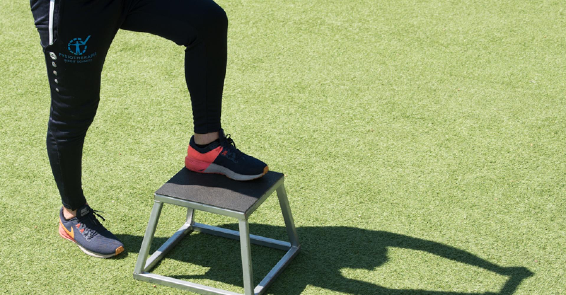 bs-fysiotherapie-2020
