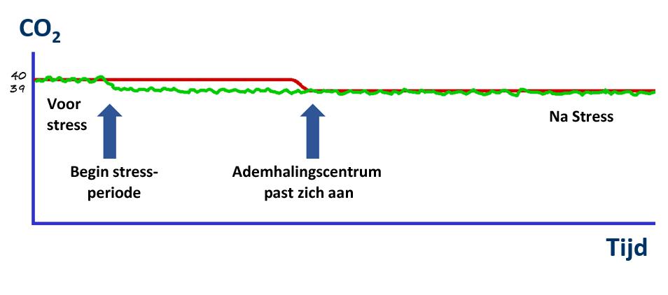 Ademhalingscentrum past zich aan aan hyperventilatie