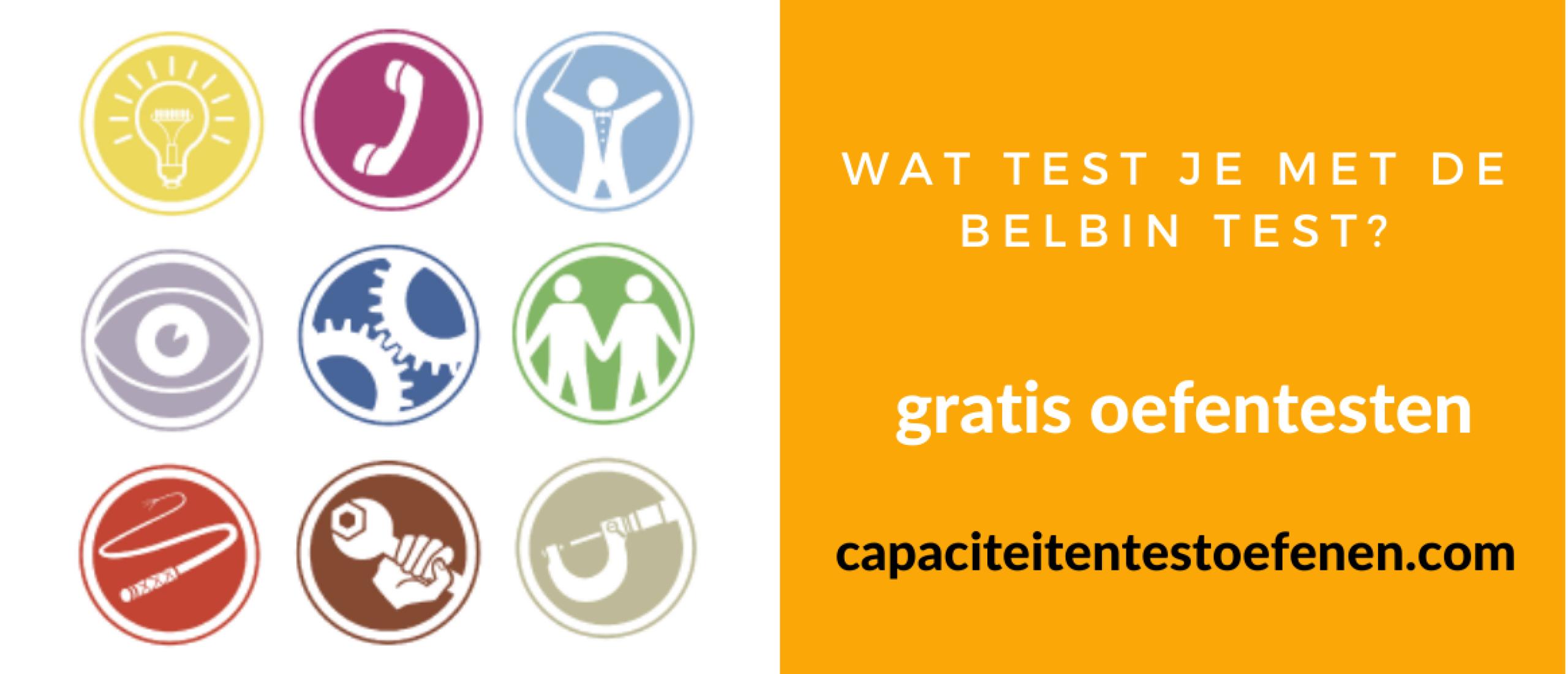 Wat test je met de Belbin test?