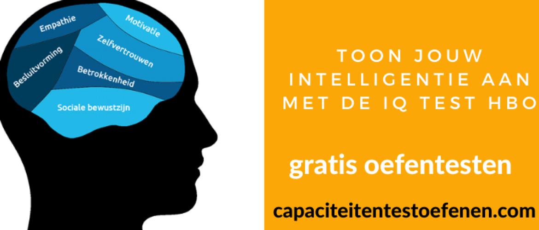 Toon jouw intelligentie aan met de IQ test hbo