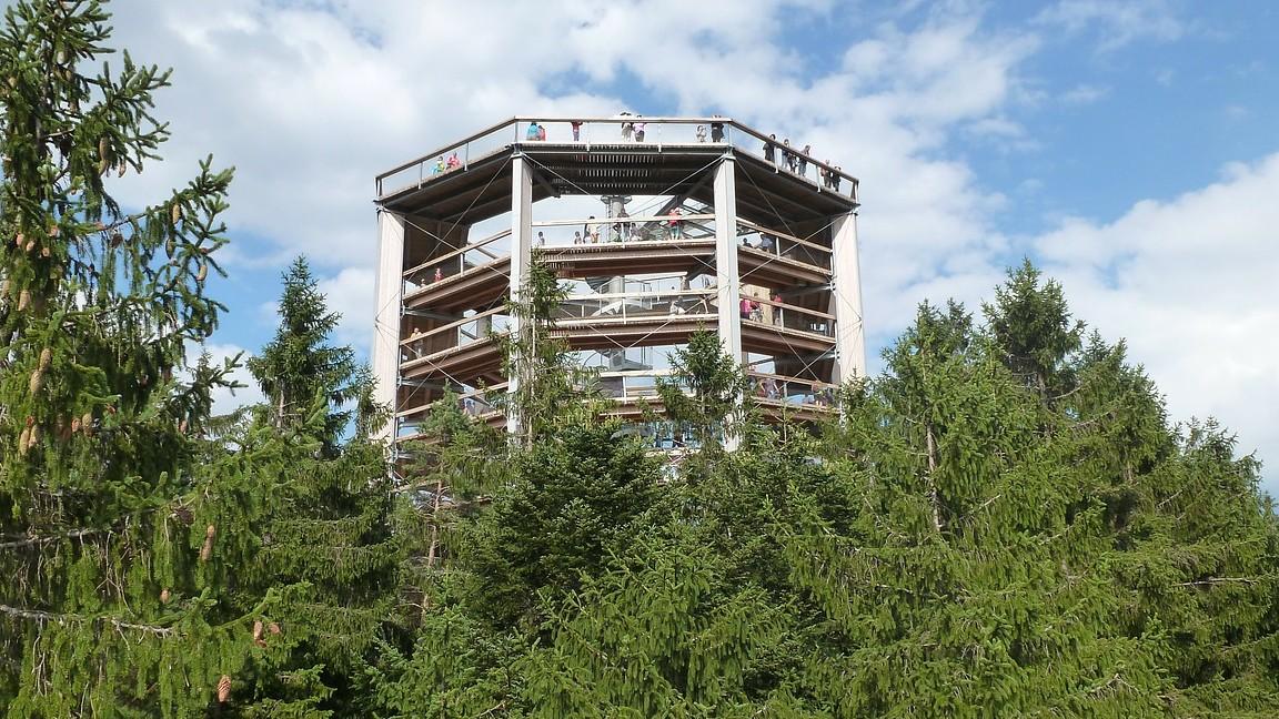 Uitzicht-uitkijktoren-Boomkroonpad-Lipno-Tsjechië
