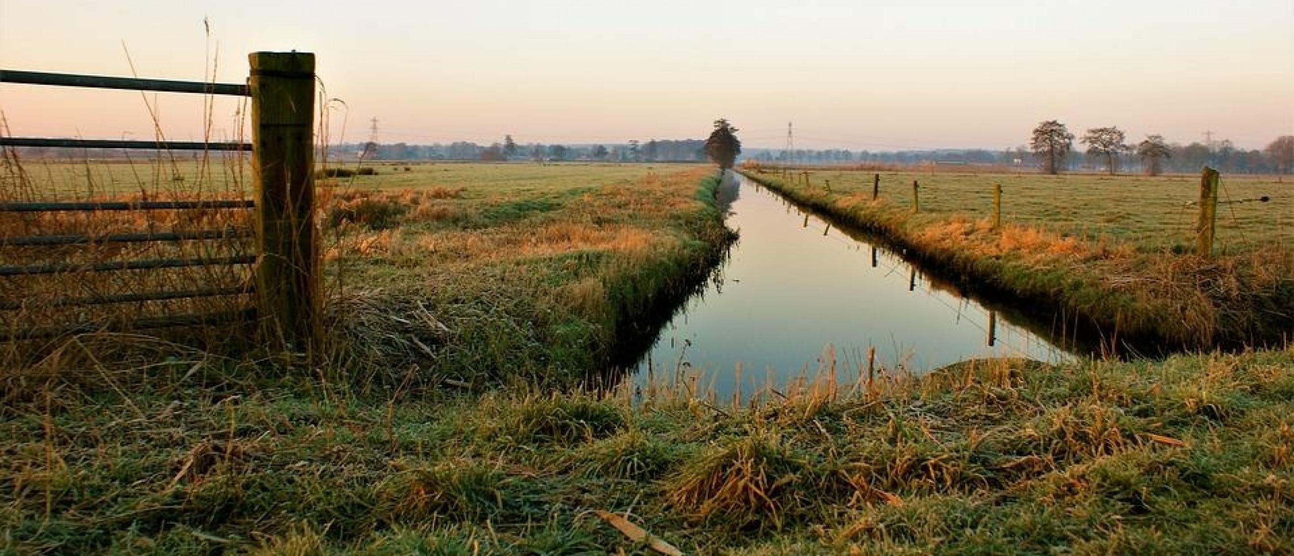 7 Top Outdoor Activities to do in the Netherlands