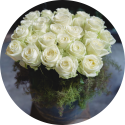 Avalanche Roses Berlin Florale Welten
