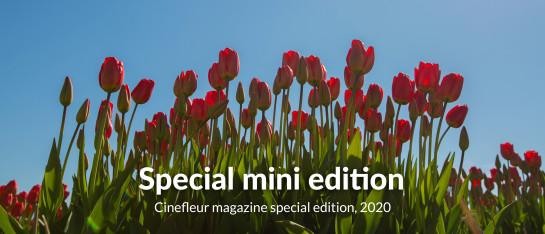 cover edition special mini