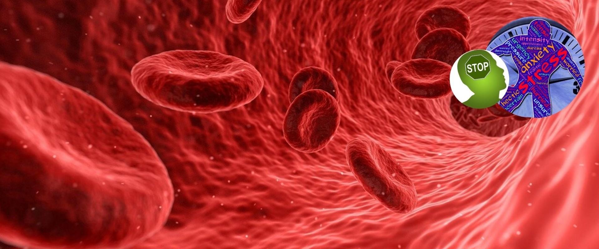 Van corona naar angstvirus – Versterk je immuunsysteem