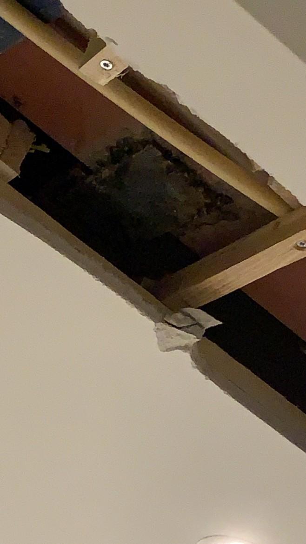 Open plafond verbouwing