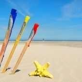 schilder workshop op het strand