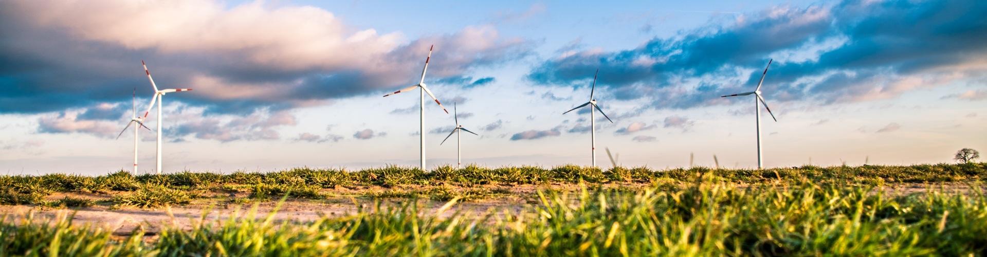 windmolens met groen gras en blauwe lucht