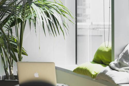 groener kantoor door planten