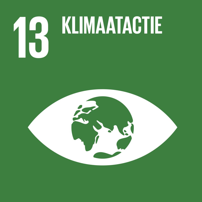 Sustainable Development Goal 13: Klimaatactie