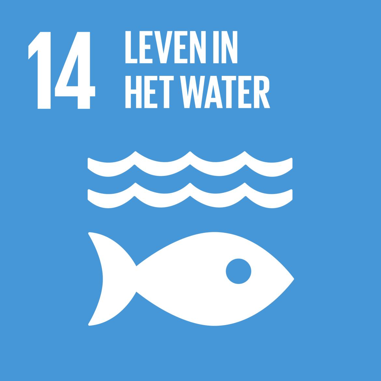 Sustainable Development Goal 14: Leven in het water