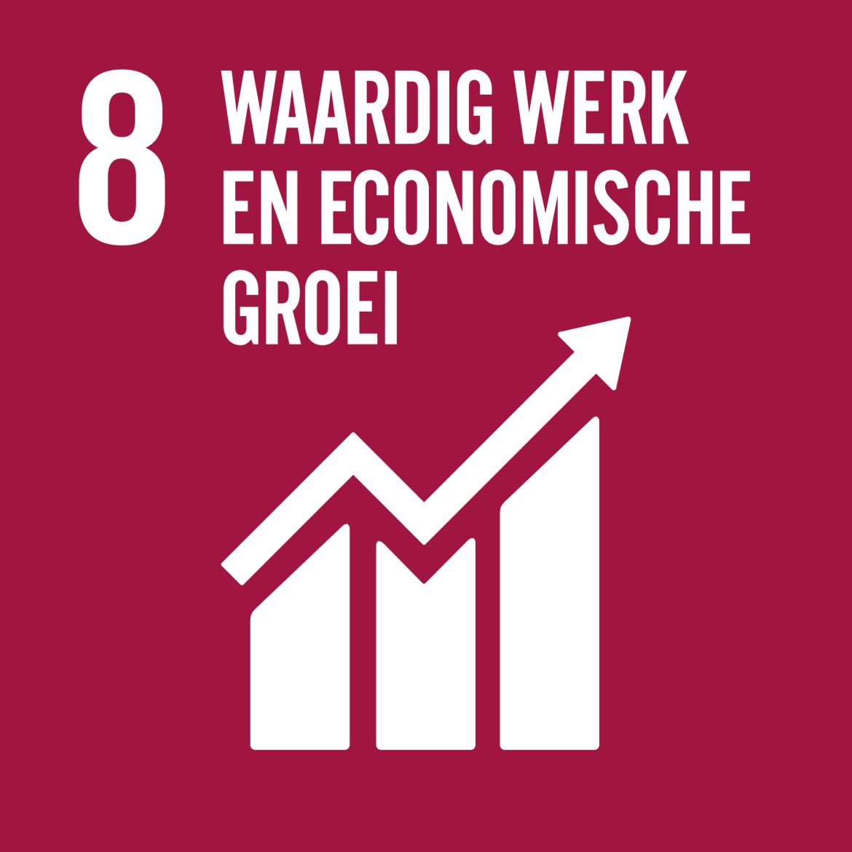 Sustainable Development Goal 8: Waardig werk en economische groei