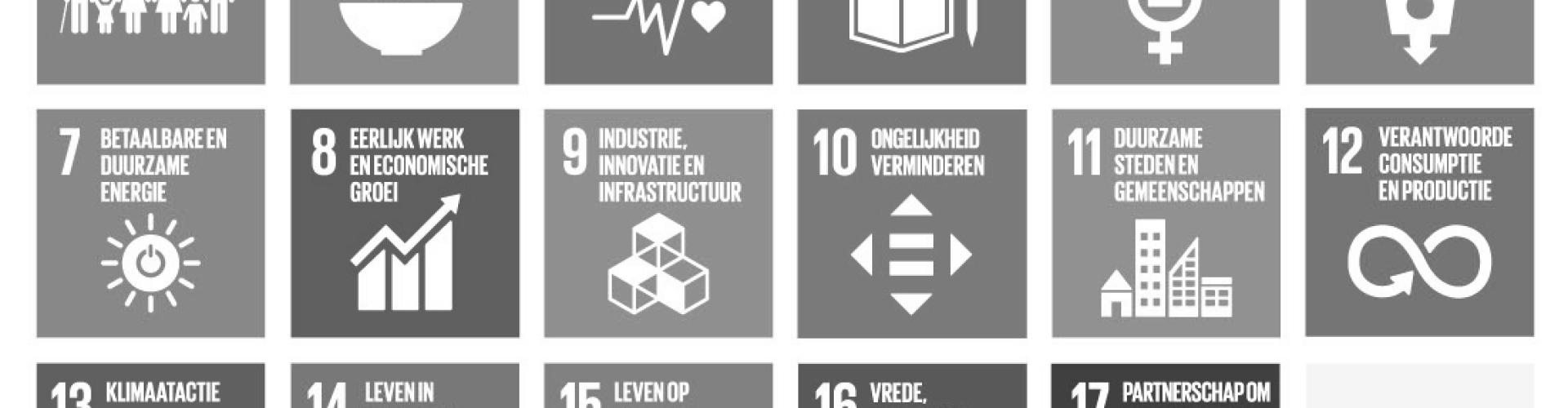 Sustainable Development Goals / Duurzame Ontwikkelings Doelstellingen