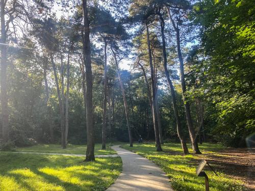 Groepsaccommodatie in Friesland aan het bos