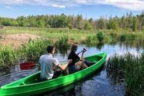 Kana varen Ravenswoud