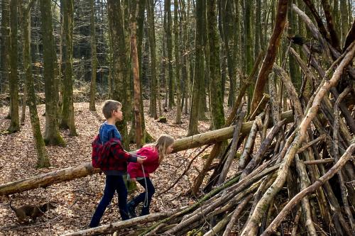 Bouw je hut bouwen in het Drents-Friese Wold