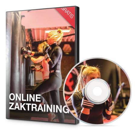 Gratis online zaktraining