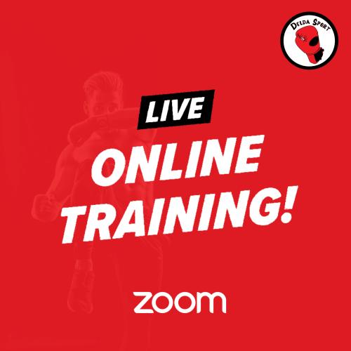 Zoom kickbokstraining live