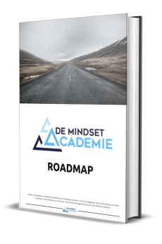 De Mindset Academie Roadmap ebook download