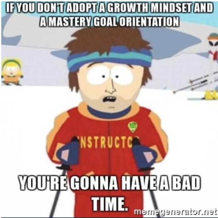 groeimindset vaste mindset