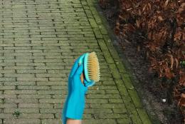 Groene aanslag verwijderen zonder schrobben? De Terraskoning staat voor u klaar