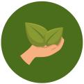 Terras schoon laten maken? Kies voor duurzaamheid -  De Terraskoning