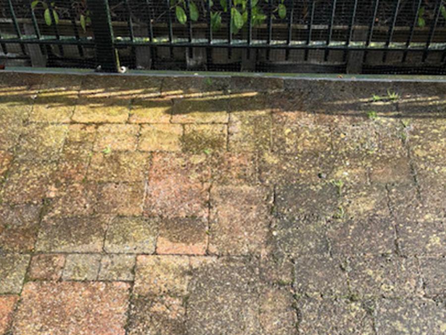 Voorbeeld van groene aanslag op een terras