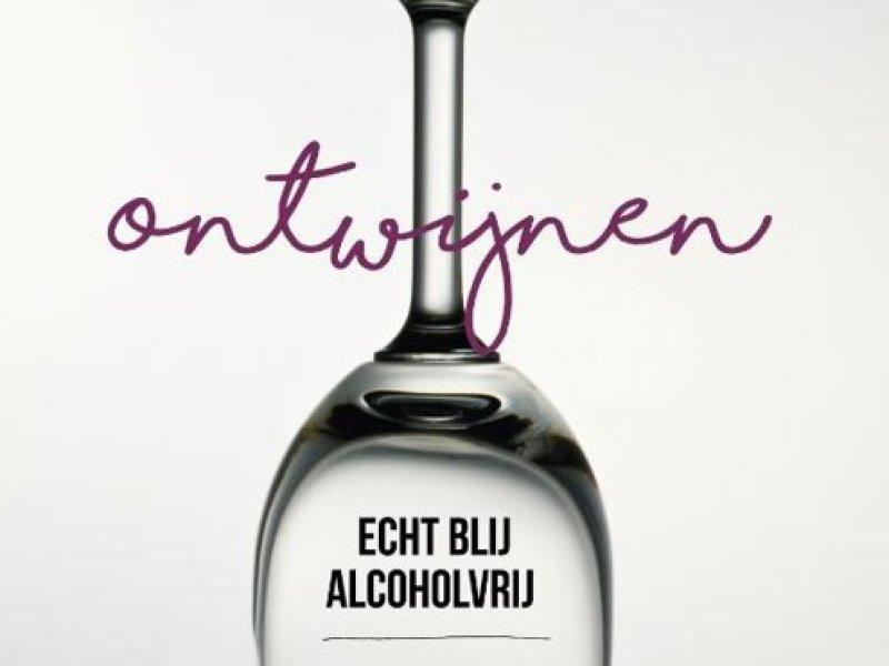 alcoholvrij minder drinken alcohol coach