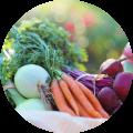 slank dieet afvallen koolhydraatarm recepten