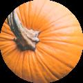 voedselallergie detox ontgiften van gifbelt