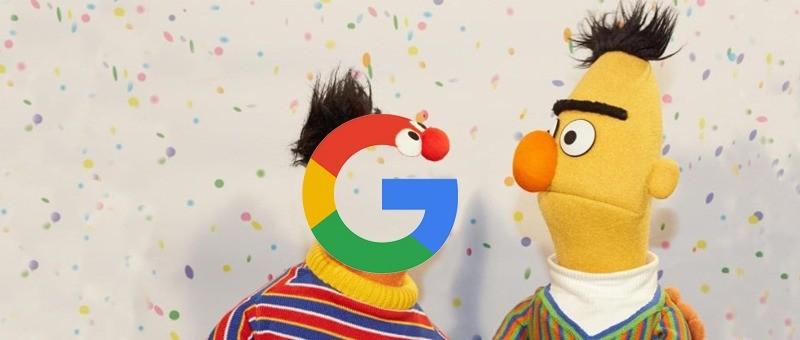 Google Bert Update in 2019