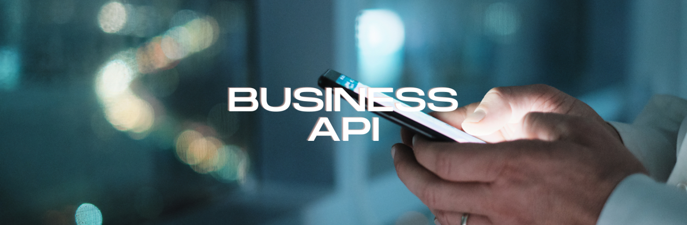 Wat is de Whatsapp Business API?