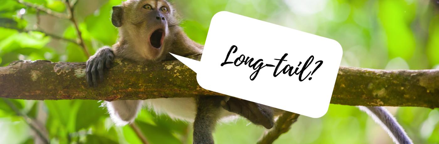 Wat zijn long-tail zoekwoorden?