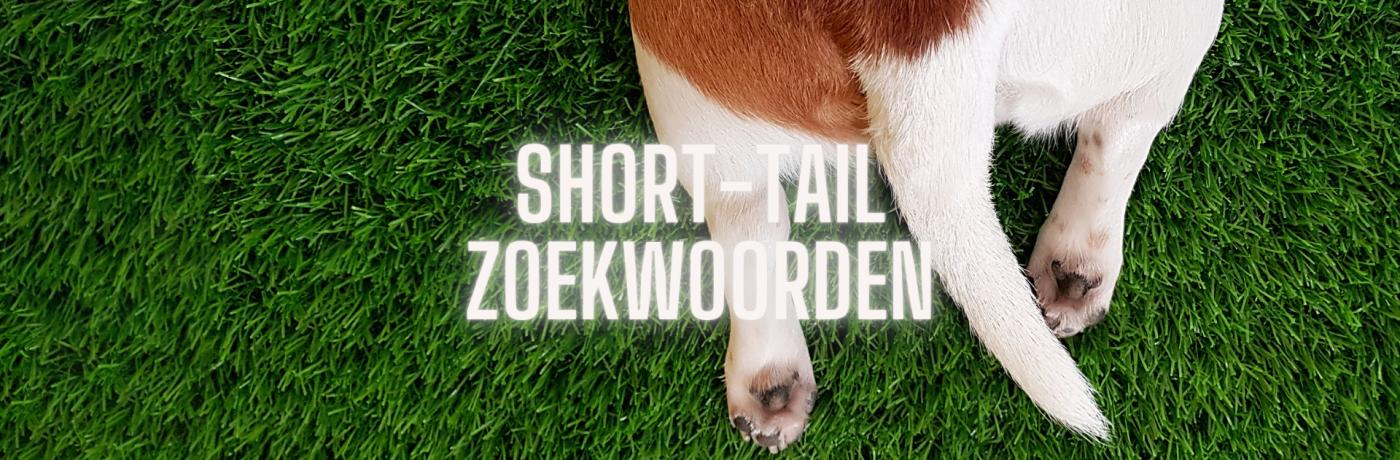 Wat zijn short-tail zoekwoorden?