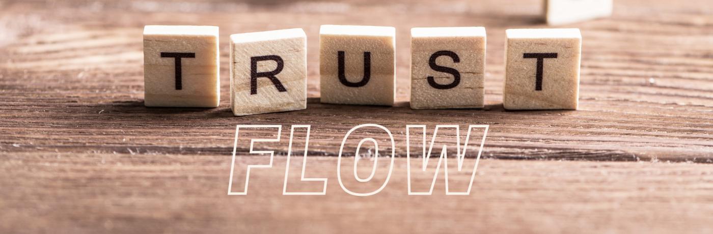 Wat is Trust Flow?