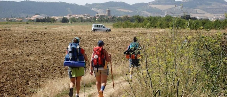 DiabetesBaas, 8 Inzichten tijdens de Camino