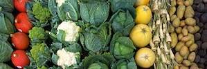 onbewerkte producten verse groente en fruit