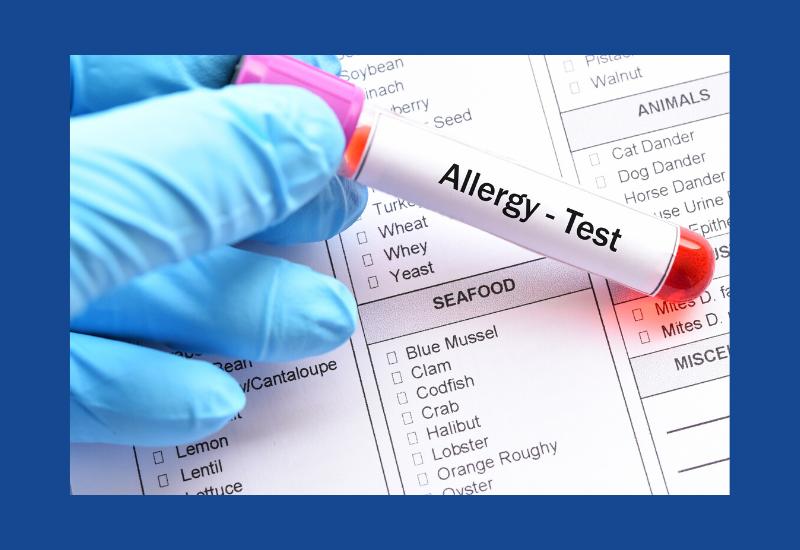 Allergie-test bij je hond: via bloedtest