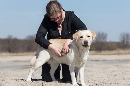 Debora is de docent van de online workshop Ontspanningsmassage voor je hond