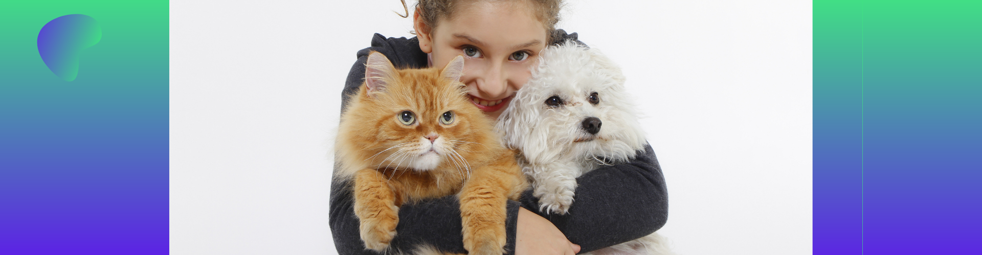 Katten-gezonde voeding adviseren: wordt professioneel voedingsadviseur